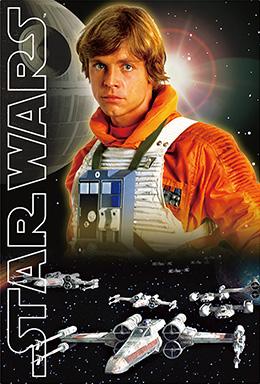 3Dポストカード STAR WARS スター・ウォーズ オリジナル・トリロジー Luke-Pirot