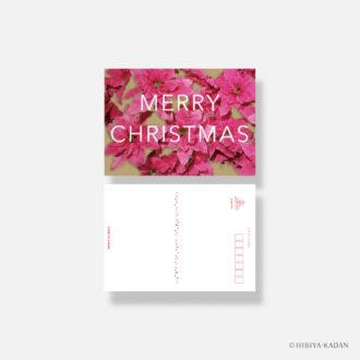 日比谷花壇 クリスマスカード typography-02 Princettia N7741