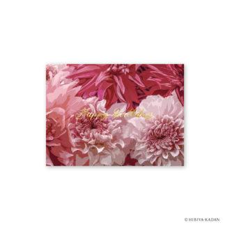 日比谷花壇 グリーティングカード ダリア N7705