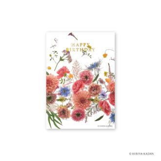 日比谷花壇 ポストカード ダリア2 N7714