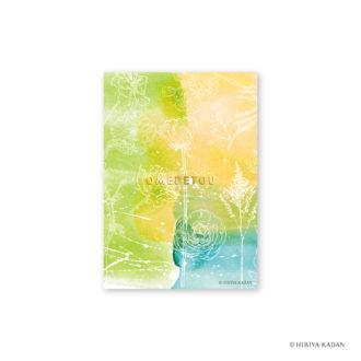 日比谷花壇 ポストカード ラナンキュラス2 N7725