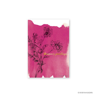 日比谷花壇 ポストカード ラナンキュラス4 N7727