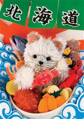 sisa 3Dポストカード 海鮮ドーン!!! S3099
