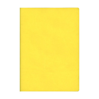 Signature Notebook A5 Yellow N75170 R4005
