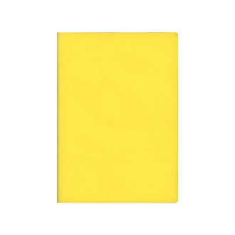 Signature Notebook A6 Yellow N76174 R4014