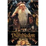 3Dポストカード ハリー・ポッター 003 Dumbledore