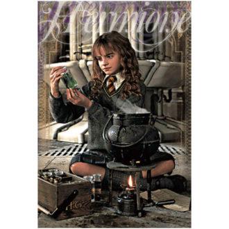 3Dポストカード ハリー・ポッター 006 Hermione Granger