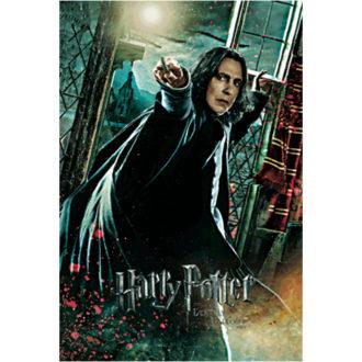 3Dポストカード ハリー・ポッター 008 Severus Snape