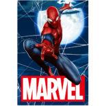 MARVEL 3Dポストカード-002 スパイダーマン Spiderman